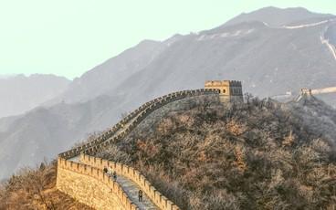 Mure i historien